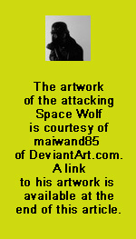 maiwand85-thanks